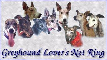 Greyhound Lover's Net Ring graphic